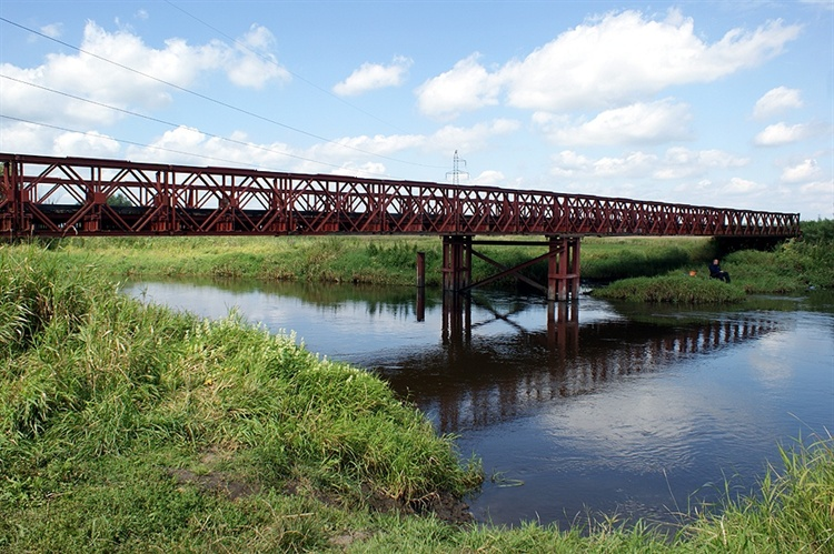 Most wNieprowicach